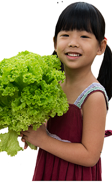 V - Girl holding romaine