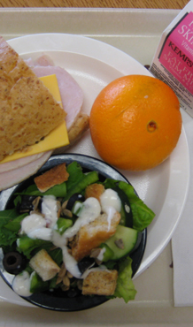 V - Food - School Lunch Salad, Sandwich, Orange and Skim Milk